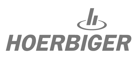 Transformation interne IT mit theLivingCore Transformation Consultants (https://www.hoerbiger.com/)